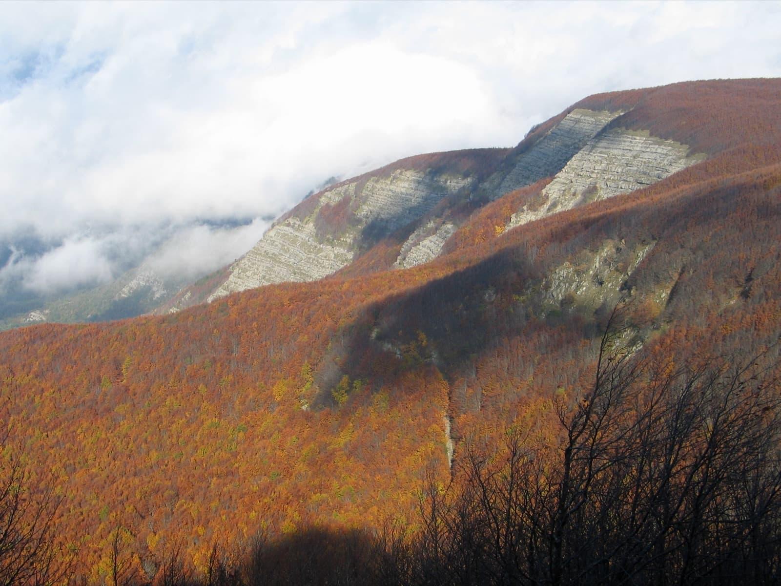 Monte Falterona dalla cima del Monte Falco Ph. Elwhajeff via Wiki