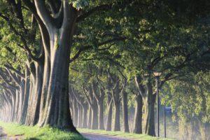 5 divertenti itinerari per scoprire l'Emilia Romagna