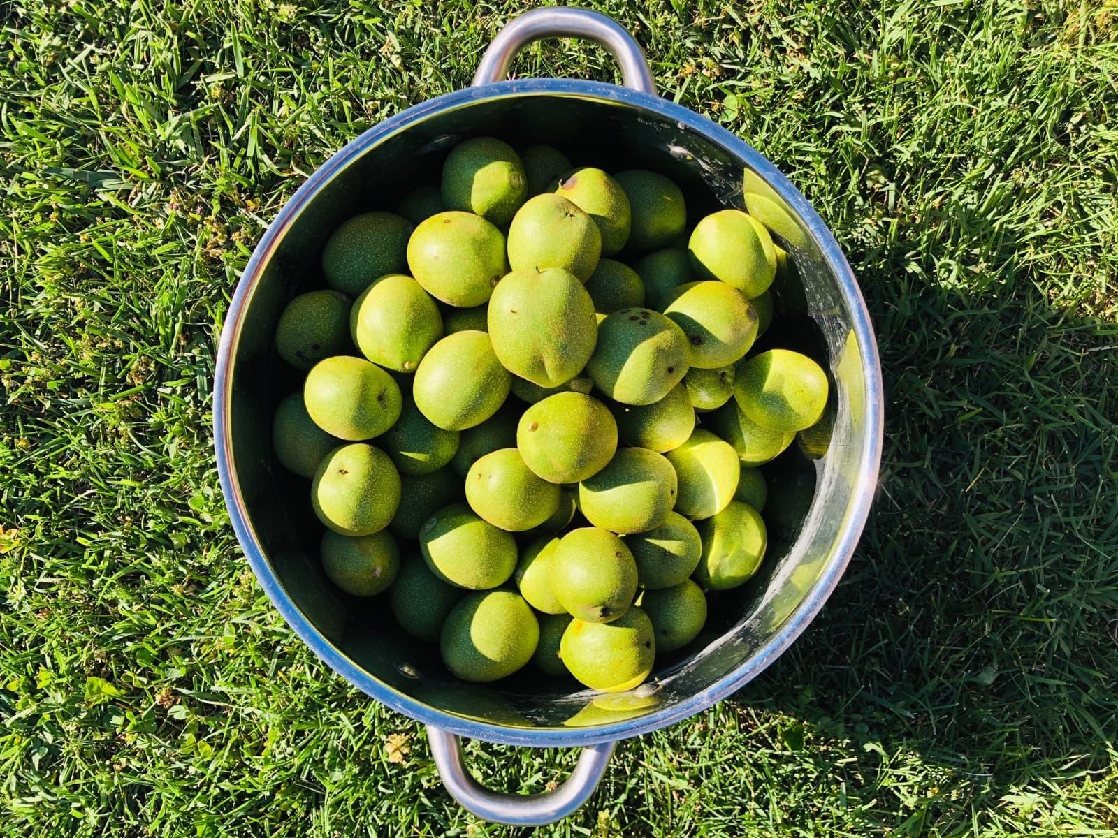 How to prepare Nocino, liqueur from Modena