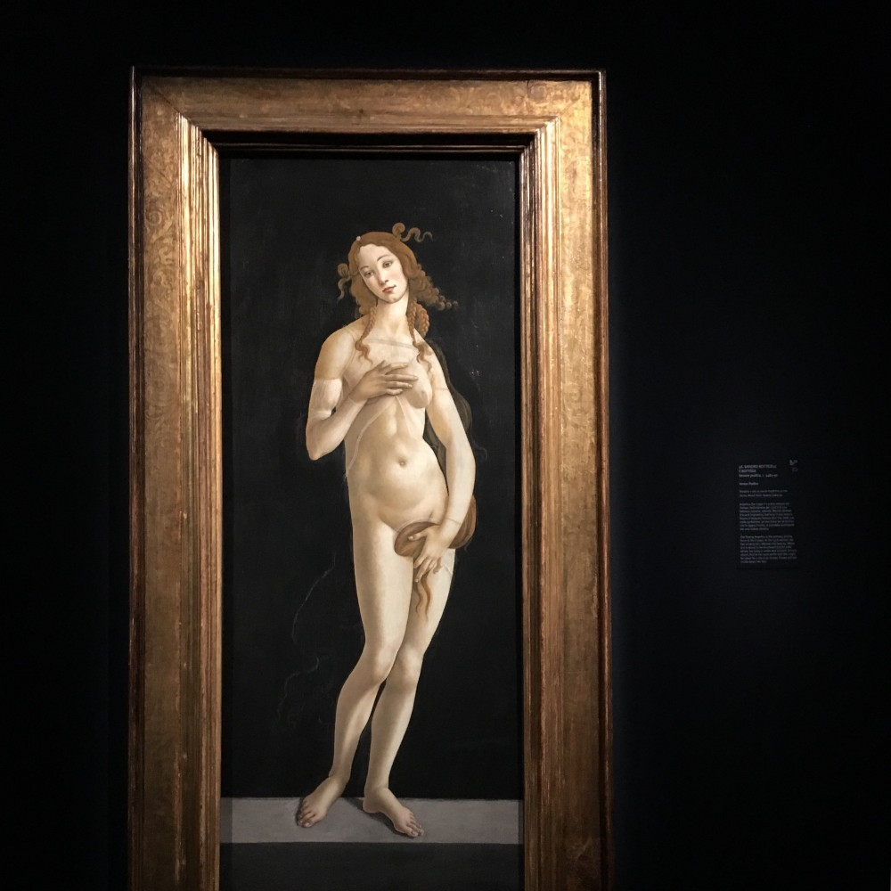 Sandro Botticelli e bottega Venere pudica 1485-90, olio su tavola trasferita su tela Torino, Musei Reali, Galleria Sabauda Angelica che fugge è il primo motore del Furioso. Nell'edizione del 1516 è di una bellezza astratta, siderale. Mentre attende d0essere inghiottita dall'orca, il suo corpo è bianco e levigato: Ariosto dice che, nella sua nuda perfezione, se non fosse per le lacrime che le rigano il volto, si potrebbe scambiarla per una statua classica.