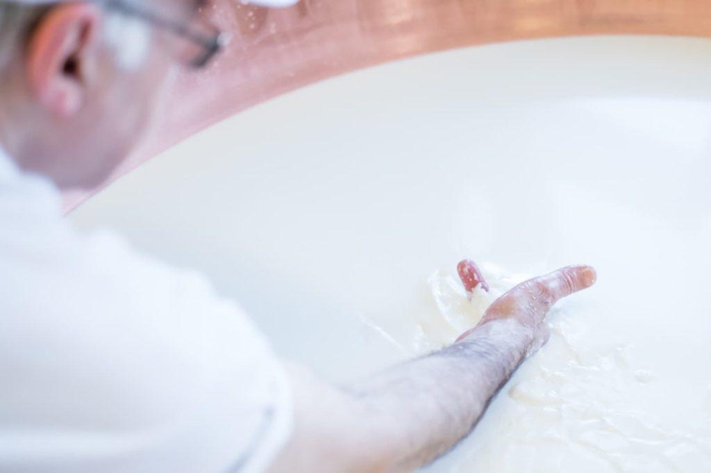 Parmigiano Reggiano, processo produttivo Ph. Camilla Bertuzzi