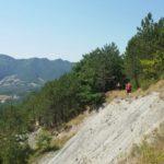 Cammino di San Vicinio – Verghereto, Ph. Associazione Cammino San Vicinio