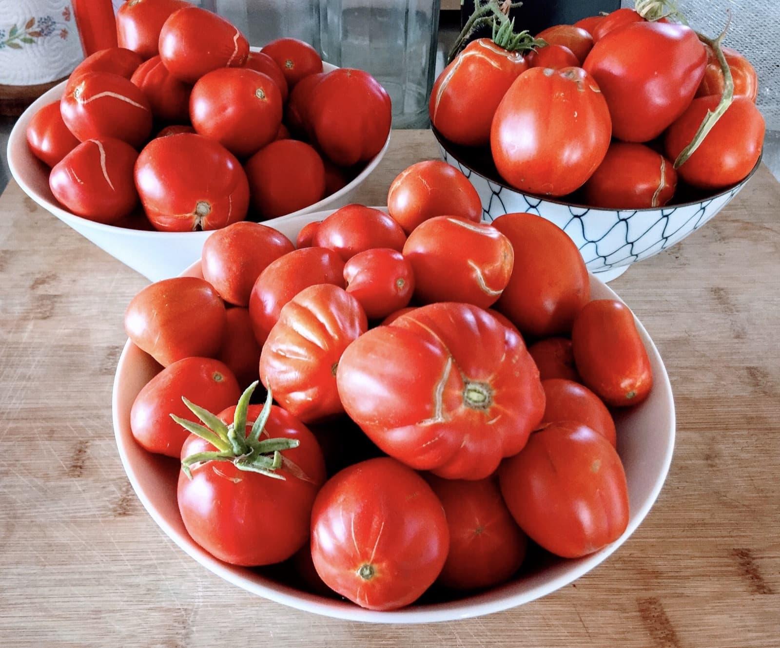 Grandma's Pomarola – Italian tomato sauce
