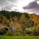 Premilcuore Ponte Romano presso Grotta Urlante – Vie di Dante