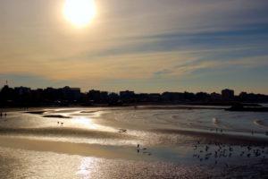 [ParlamiditER] Rimini, non solo mare