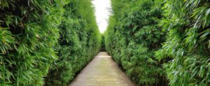 Historical gardens and parks in Emilia-Romagna