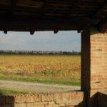Oasi di Torrazzuolo, via Visit Nonantola