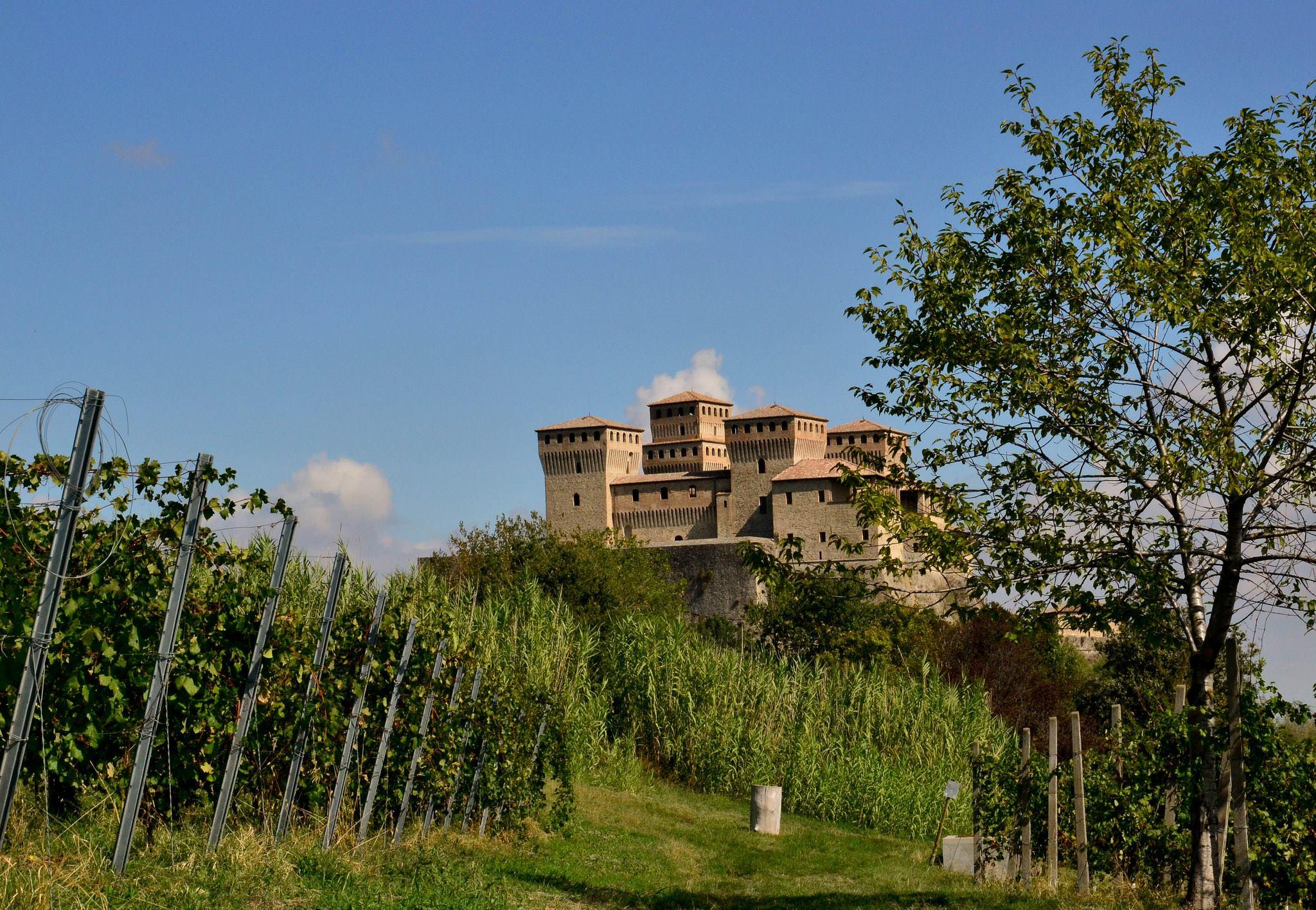 Parma's Malvasia, vineyards and castles - Ph. Parma City of Gastronomy