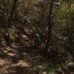 Valmarecchia (RN), Mountain bike tra i boschi   Archivio Riviera di Rimini