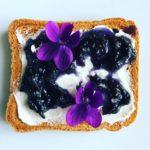 Violet Jam | Ph. FedeCortezzi