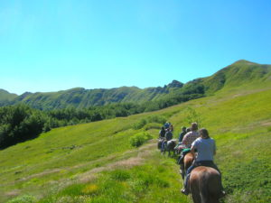 Autumn horse riding in Emilia Romagna