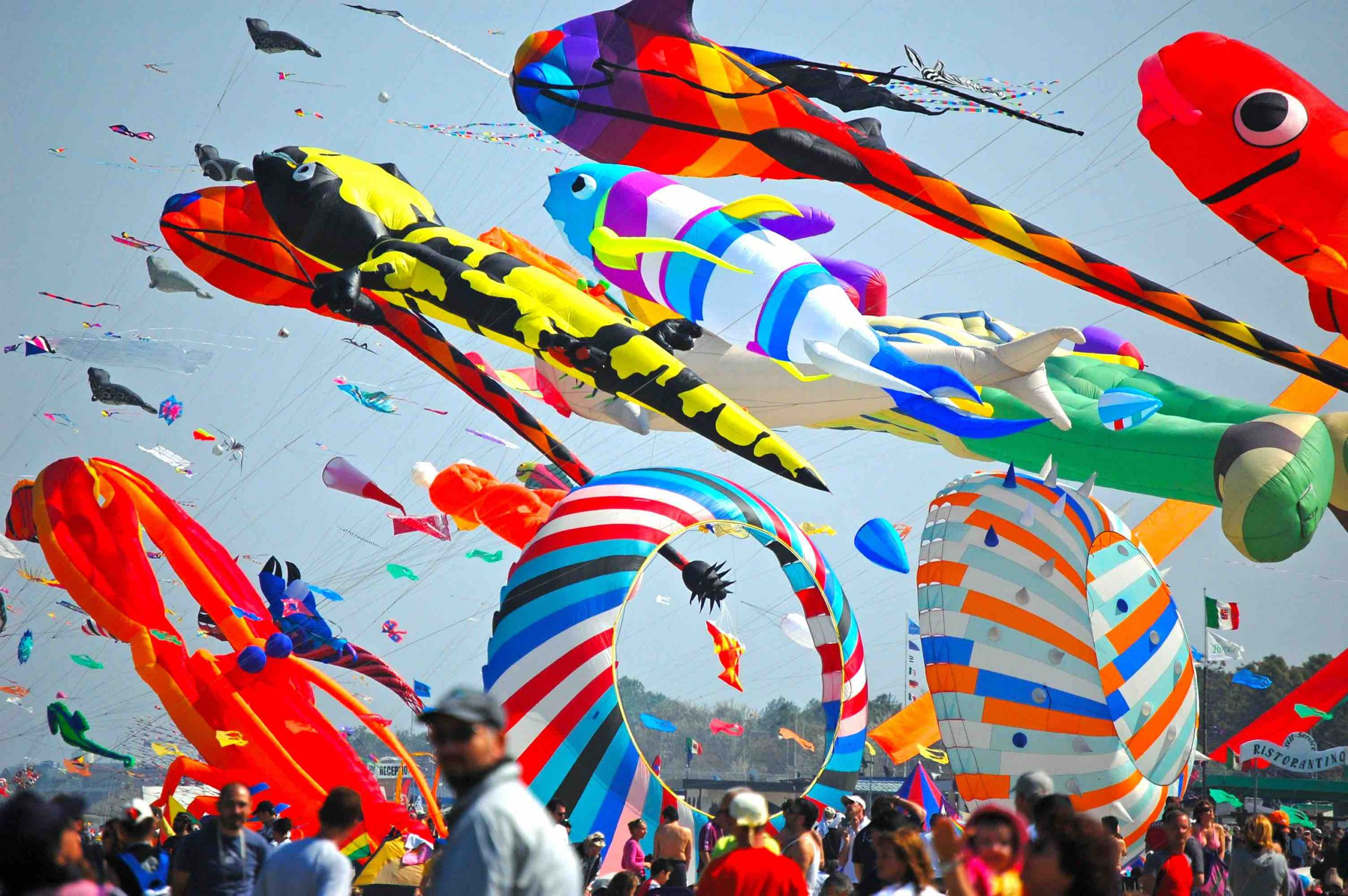 Flying kites for the most colored festival in Emilia-Romagna