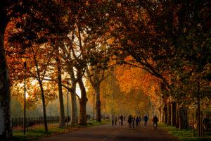L'autunno nelle città d'arte dell'Emilia-Romagna