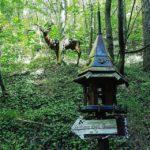Bagno di Romagna – Sentiero degli gnomi Ph. @dadeds3