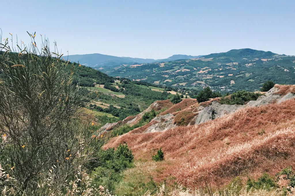 SocialTrek (Cammino di San Francesco)   Panorama sulla Valmarecchia