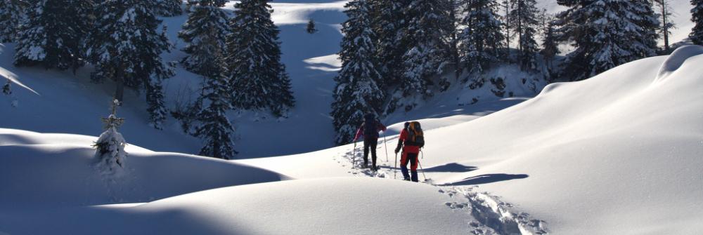 Snowshoeing in Emilia Romagna: enjoy the white Apennines