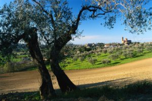 Up hills and down dales: unusual routes around Rimini