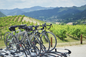 Cycling, cooking, tasting: the Tourissimo Experience in Emilia Romagna