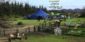 [ParlamiditER] DulcamART: chi ha piantato il circo nell'orto?