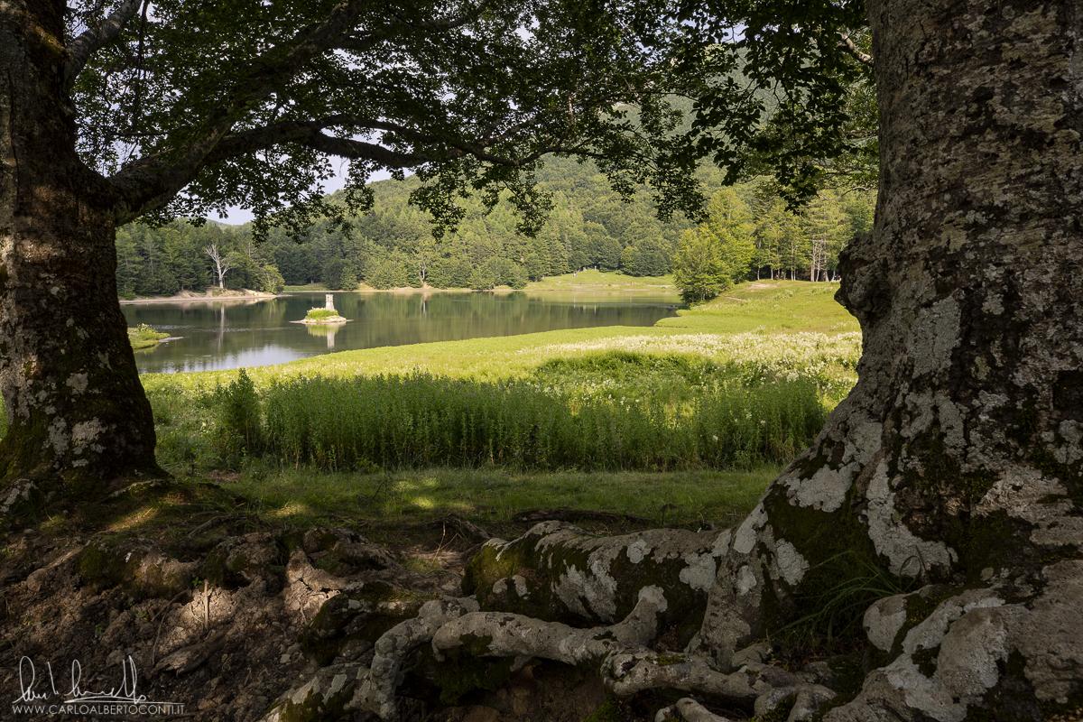 estate-lago_di_calamone_reggio_emilia-parco_tosco-emiliano_ph.carlo_alberto_conti