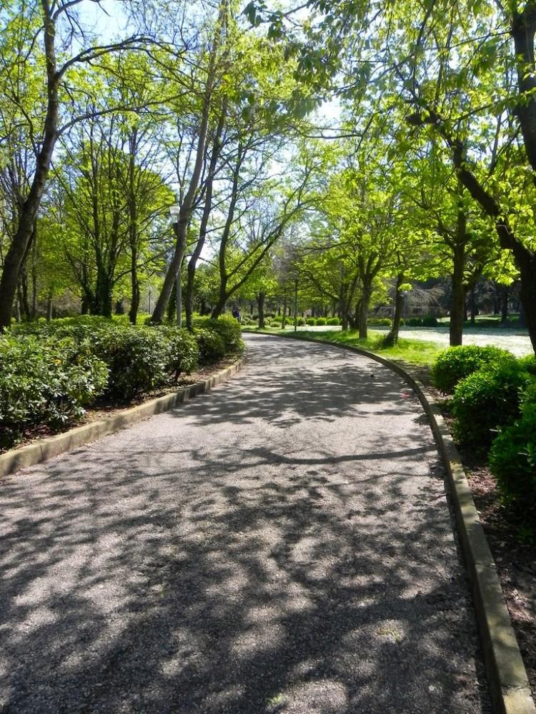 [Parlami di tER #87] Primavera in città, tempo di pic nic. Guida ai giardini e ai parchi più belli di Riccione