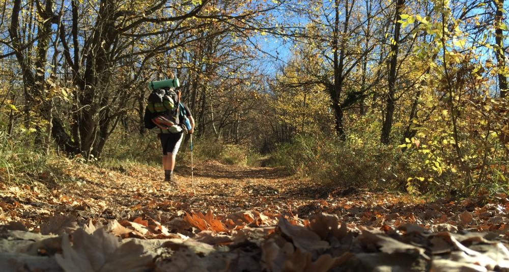 Vie dei Pellegrini da Percorrere in Emilia Romagna (Seconda Parte)