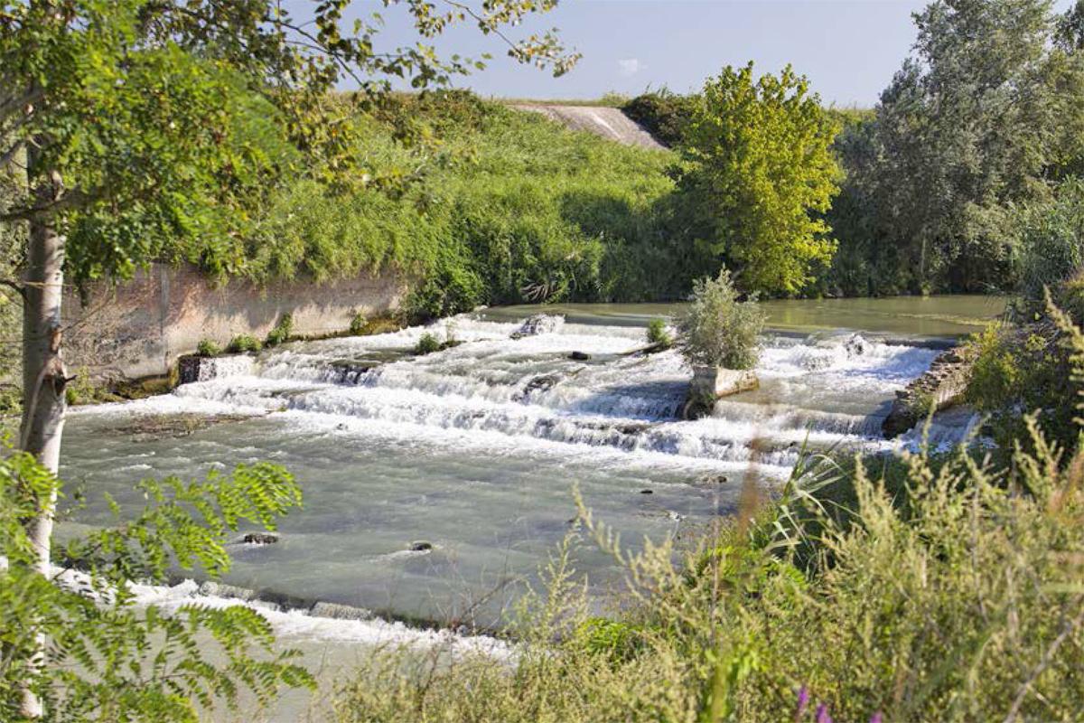 Lungo il fiume Lamone | Il Muraglione (Bagnacavallo)
