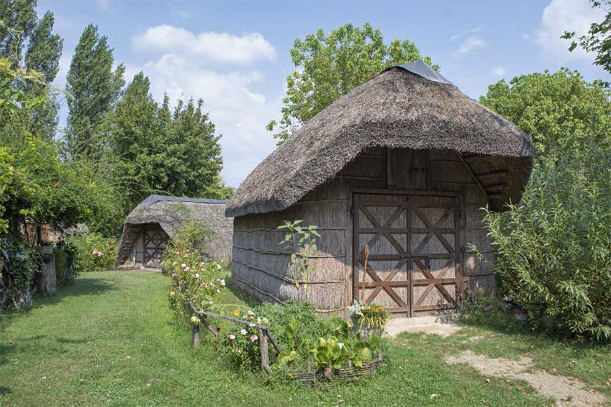 Lungo il fiume Lamone | Ecomuseo delle Erbe Palustri (Bagnacavallo)