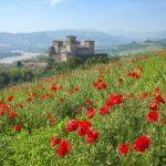 Castello di Torrechiara – Ph. Enrico Robetto