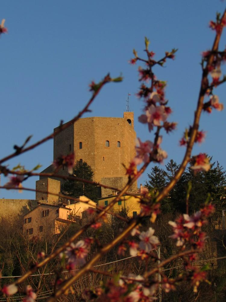 Montefiore Conca WLM2014 | Ph. laralally19