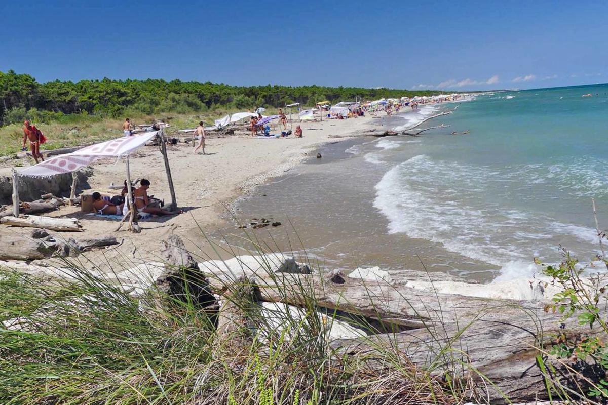 The Bassona Beach (Ravenna)