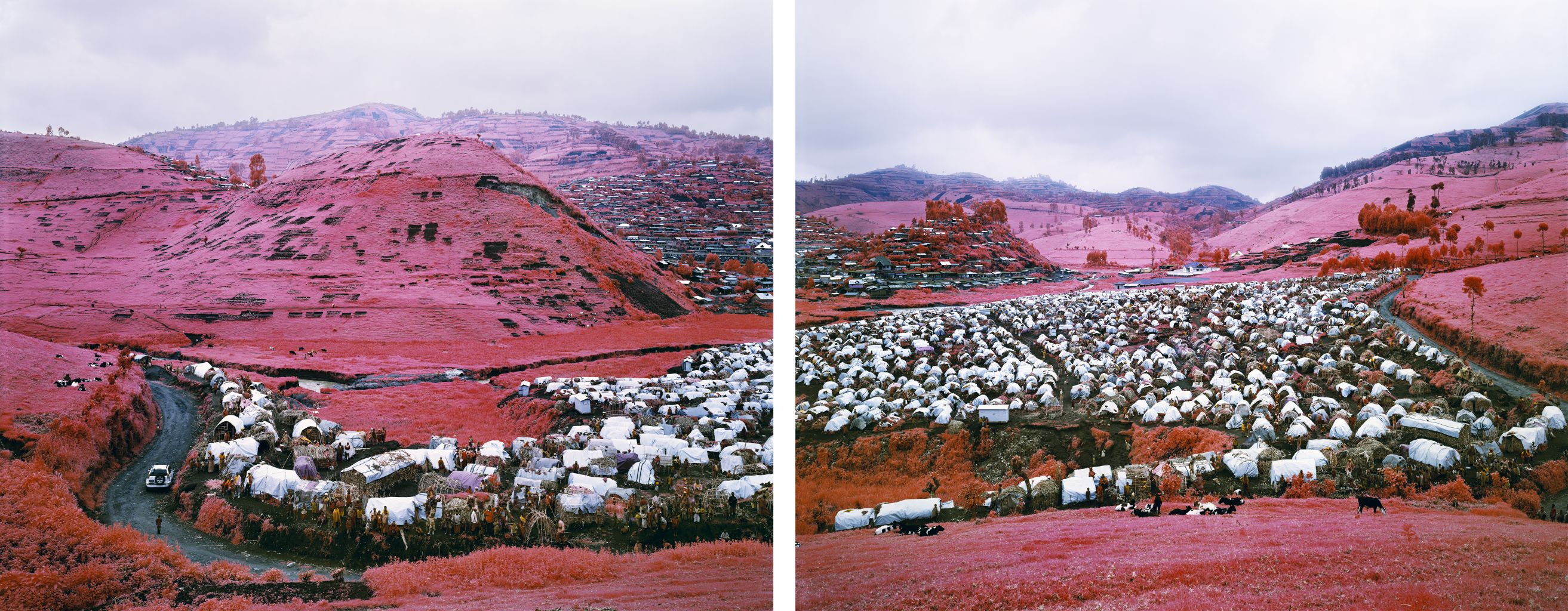 Thousands are Sailing I, II eastern Democratic Republic of Congo, 2012, Infra series ©Richard Mosse. Private collection