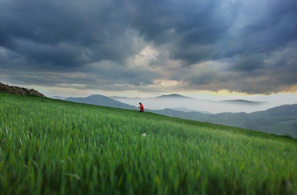 [Parlami di tER] Le colline di Parma, a due passi da casa