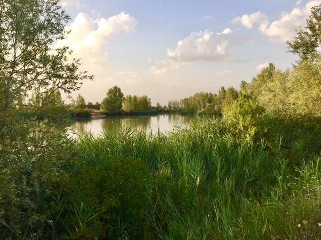 Argelato (BO), Boscovivo – Escursione con Guide GEV, ph. GrandTour Emilbanca